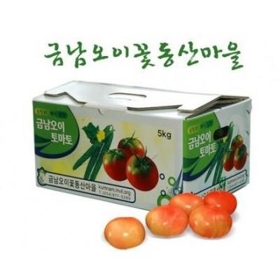 [금남오이꽃동산마을] 벌꿀 토마토 5kg