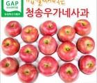 [청송우가네사과농장] [특] 청송 부사  8KG 22과