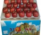 [청송꿀맛사과] [가정용] IPM사과 부사 8kg (36 - 42과)