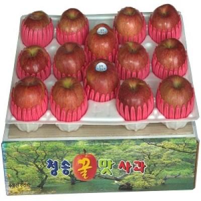 [청송꿀맛사과] IPM사과후지(부사) 4kg (14 - 16과)
