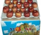 [청송꿀맛사과] [가정용] IPM사과 부사 8kg (30 - 36과)