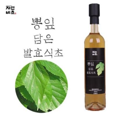 [농업회사법인(주)들산초] 자연비초/뽕잎 담은 발효식초 500ml