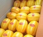 [농부의미소] 최상품 특품 성주참외(선물용) 10kg(28-37과)