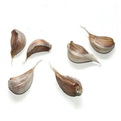[송이네농장]2019년 의성 토종 씨마늘 종자마늘 (쪽마늘) 3kg
