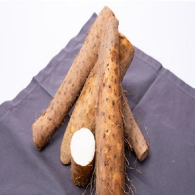 [현이네농산] 무농약장마 중품 3kg/5kg