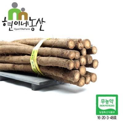 [현이네농산] 생 햇우엉 2kg