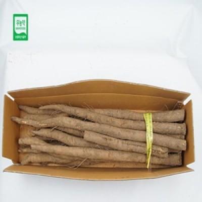 [현이네농산] 무농약 우엉 2kg/5kg