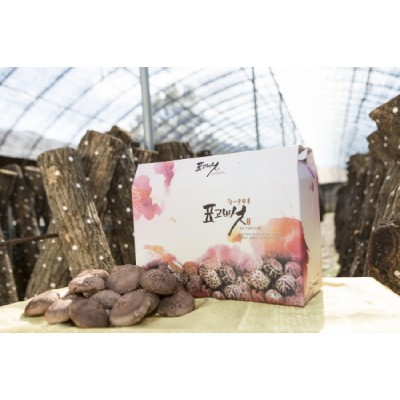 [경성표고버섯농장] 생표고버섯 (상품) 2kg