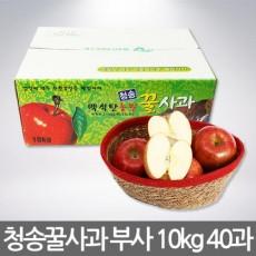 [GAP인증] 청송꿀사과 부사 10kg (40과-크기小)