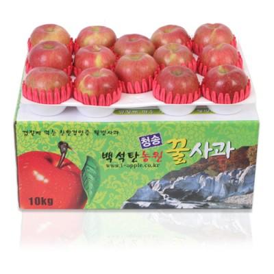 [GAP인증] 청송꿀사과 부사 10kg (35과 크기-中小)