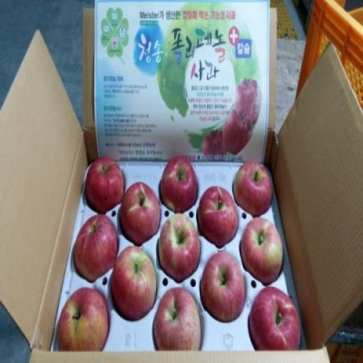 [산중농원]사과 시나노스위트 8kg 20-26과