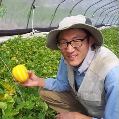 [우수농산물GAP/친환경 인증]참외가정용C품10kg