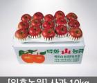 일흥농원 사과(부사) 10KG (46~50과) [GAP 인증]